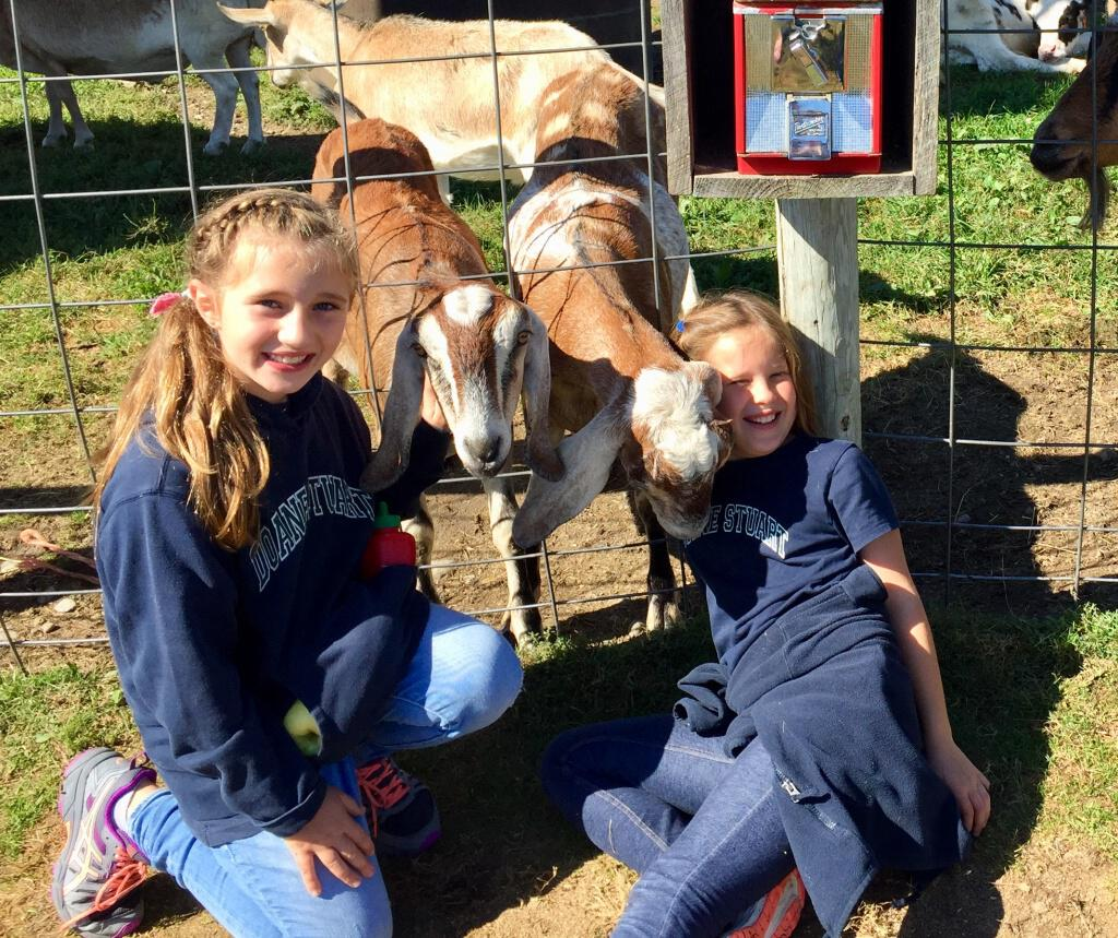 Lower School Students Visit Bowman's Orchard